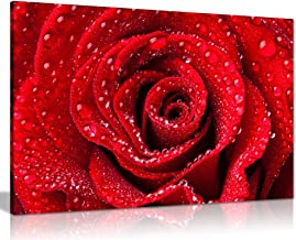 Red Rose Dew Water Drops Canvas Wall Art Picture Print (30x20in)