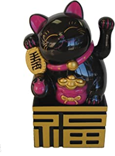 Feng Shui Import 5.5