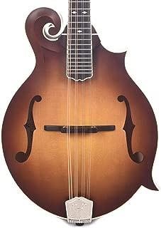 mandolin f holes