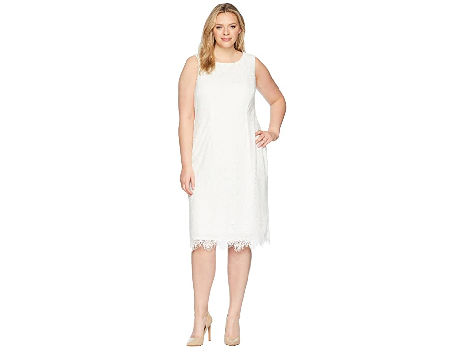 Adrianna Papell Plus Size Scarlett Lace Midi Sheath (Ivory) Women