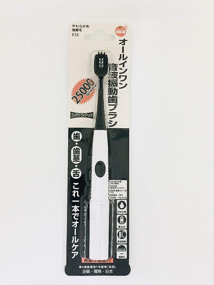平衡納屋太いオレンジケアプロダクツ オールインワン音波振動歯ブラシ K16 1本