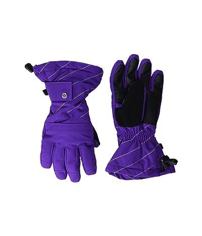 Spyder Kids Synthesis (Little Kids/Big Kids) (Majesty) Extreme Cold Weather Gloves