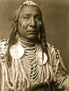 Crow Indian Montana head-and-shoulders portrait facing slightly right streaks of white paint on cheeks and hair beaded buckskin shirt trimmed with ermine tails or white rabbit fur Poster Print (24 x 3