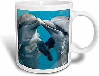 3dRose Dolphin Play Ceramic Mug, 15-Ounce
