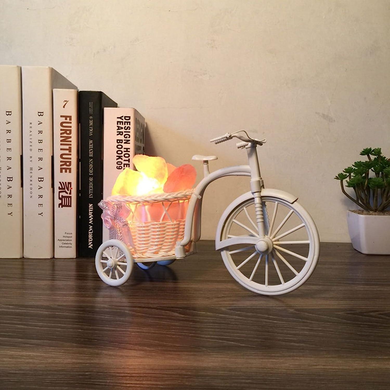 TPYS Kreative Rattan Fahrrad Salz Lampe Garten Kreative Schlafzimmer Nachttischlampe Dimmen Nachtlicht Geburtstagsgeschenk (Farbe   Dimmschalter)