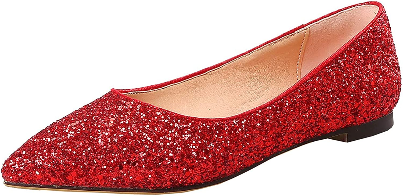 Artfaerie Womens Glitter Pointed Toe Pumps Flat Court shoes Wedding Bridal shoes