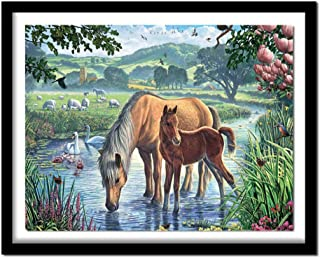Huanxidp 5D DIY Diamond Painting Animal Full Square Rhinestone Wall Decor Diamond Embroidery Cross-Stitch Kits Horse New N...