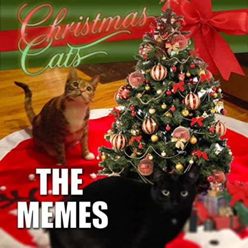 Christmas Memes Cats.Christmas Cats