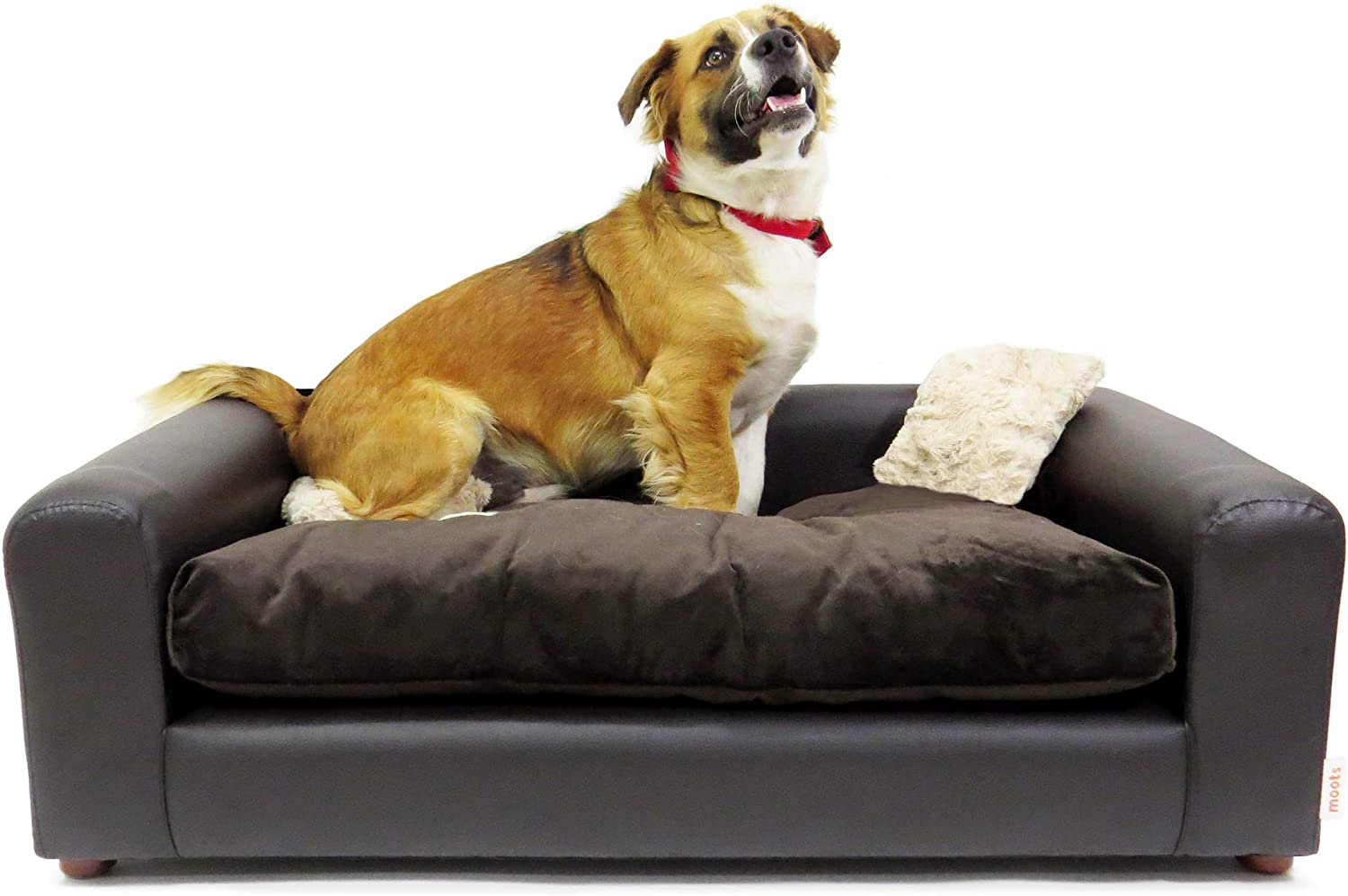 Moots Premium New Complete Free Shipping Shipping Free Leatherette Sofa Pets