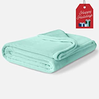 ViscoSoft Fleece Winter Blanket Queen Size | Soft & Plush, Lightweight Design |Mint Green Throw Blanket