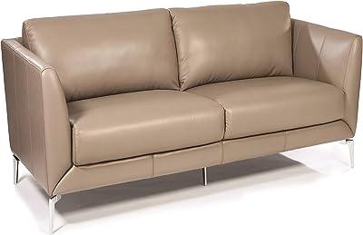 Surprising Amazon Com Baxton Studio Dakota Leather Modern Loveseat Creativecarmelina Interior Chair Design Creativecarmelinacom