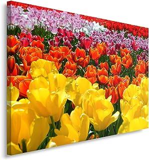 40X22.5 Solo Tela Quadri Fiori Moderni Astratti Tulipani Colorati