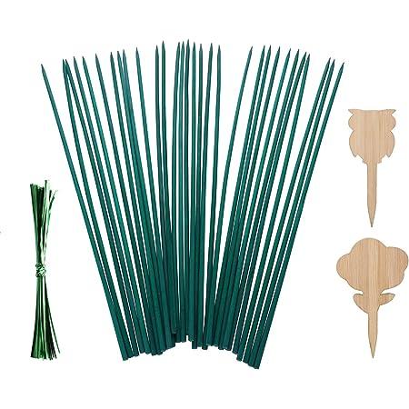 BuleEco Soporte para Plantas de Palos de Jardín Soportes de Estacas de Madera para Jardín para Plantas en Macetas Paquete de 30