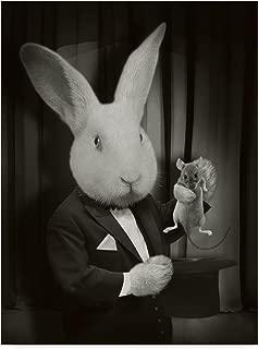 Trademark Fine Art Rabbit Magician BW by J Hovenstine Studios Fine Art 24