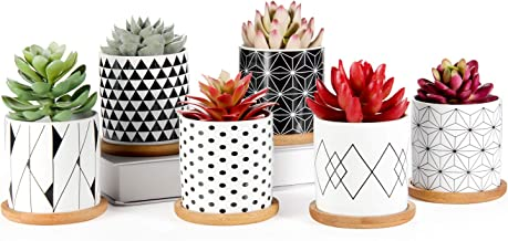 Succulent Pots 6 Pack, Laerjin 3 Inch Succulent Planters with Drainage and Bamboo Tray, Geometric Patterns Ceramic Small P...