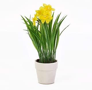 Narzissenbund 42cm gelb GA Kunstblumen künstliche Blumen Narzissen Osterglocken