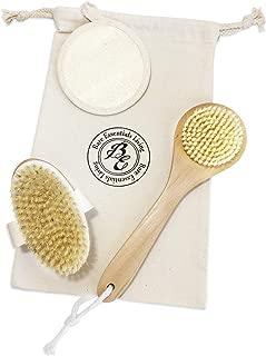 dry skin brush for face
