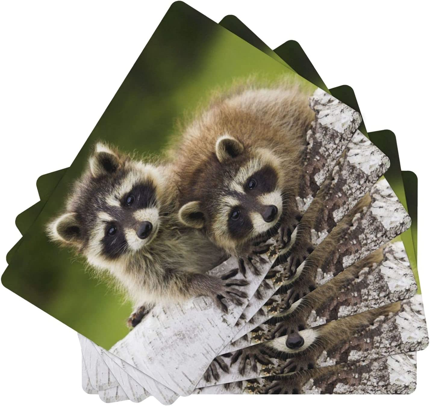 XKDIJIUJB Raccoons Couple Sale Ranking TOP20 SALE% OFF Timber Walk Double-Sided Place Leather