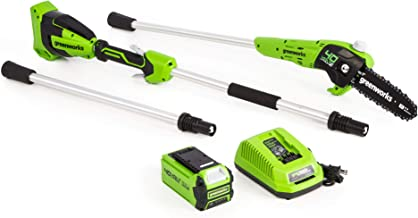 Greenworks 8-Inch 40V Cordless Polesaw, 2.0Ah Battery and Charger Included PS40B210