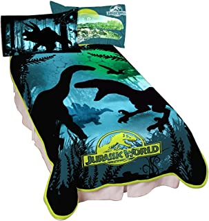 Universal Jurassic World Dino Experience Microraschel Blanket, 62