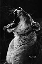 """Lioness Photography Black & White: 6""""x9"""" Blank Lined Journal, 120 Pages for Notes To Write In (Wildlife Photography Journals)"""