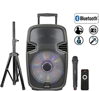 portable wireless speaker and microphone