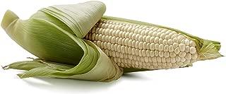 Best fresh white corn Reviews