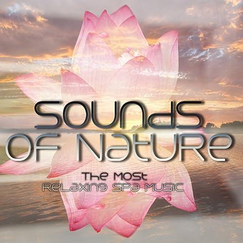 Relax Massage Spa (Piano Soft) by Mindfulness Meditation