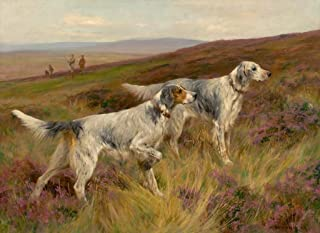 Arthur Wardle Two English Setters on a Grouse Moor c1903 : Art Print
