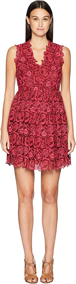 So Foxy Bicolor Lace Dress