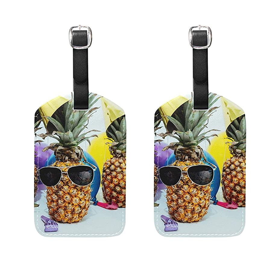jiebokejiHFGD Luggage Tags Pineapple Tropical Balloon Suitcase Label Travel Accessory Set Of 2