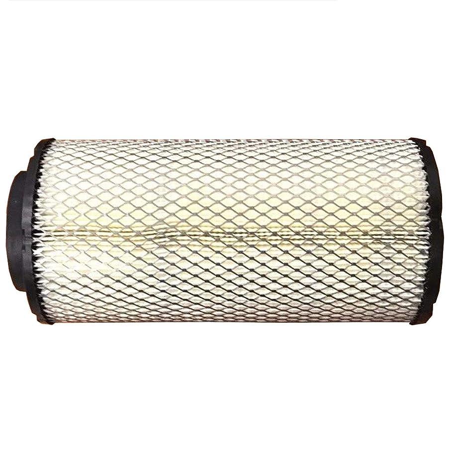 Polaris Air Filter Original OEM 1241084 (Replaces- 1240957 & 1240822)