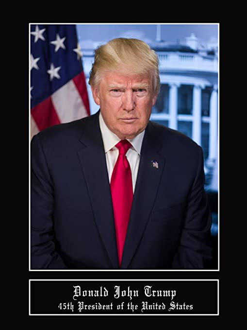 Donald Trump Poster 24x36 inch rolled wall poster