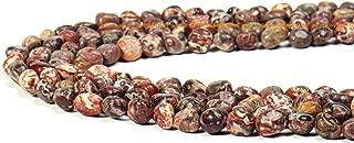 StarEidolon 100% Natural Stone Gemstone Irregular Nugget Chips Beads Semi 6-8mm Beads Crystal Energy Necklace Bracelet DIY Healing Power Stone for Jewelry Making 1 Strand 15
