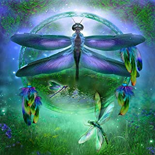 DIY 5D Diamond Picture, vmree Full Dirll Rhinestone Pasted Embroidery Painting Crystals Pasted Handcraft Cross Stitch Handiwork Kits Visual Arts Home Decor Ideal Gift (Dragonfly, 11.8