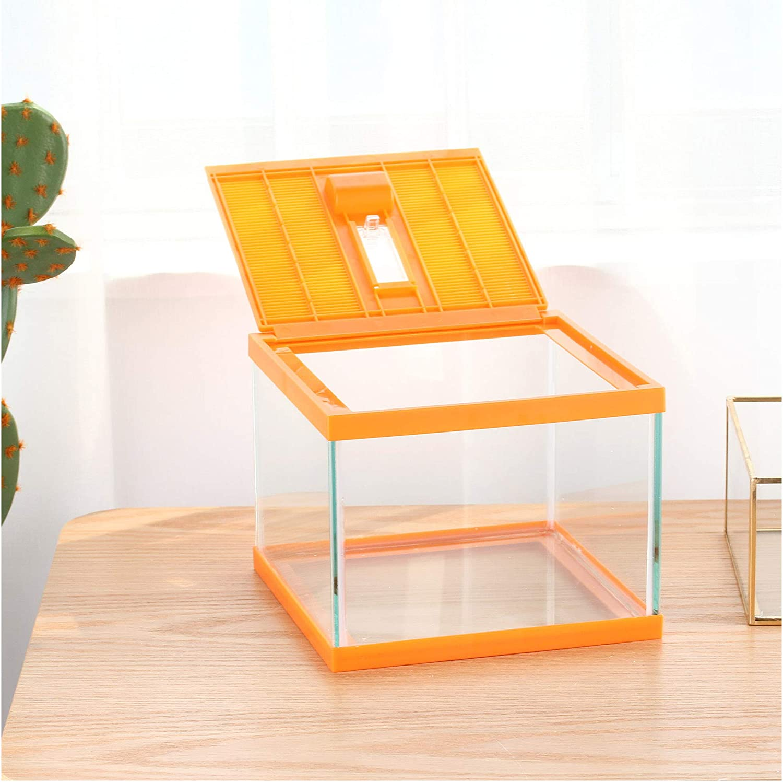 crapelles 67% OFF of fixed price Reptile Terrarium kit Color Ta Container Spider Orange Cheap super special price