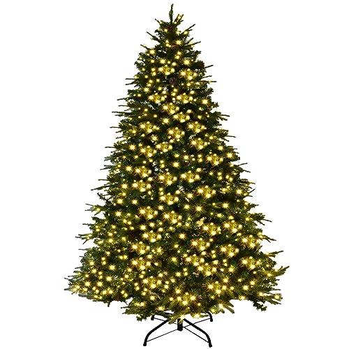 Fresh Christmas Trees.Fresh Christmas Tree Amazon Com