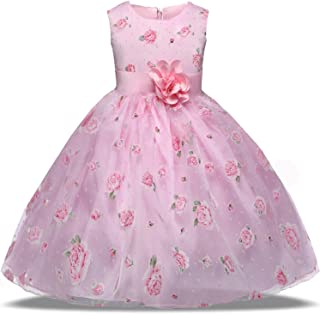 TTYAOVO Girls Flower Printing Chiffon Princess Holiday Dresses