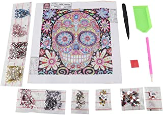 Fdit DIY Special Shape Embroidery Skull Crystal Diamond Painting Kit for Home Decor Crafts Zd003