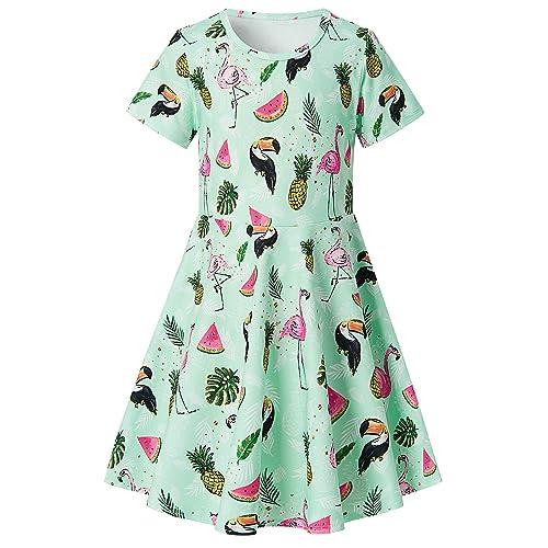 90c9123e538af6 RAISEVERN Toddler Girl s Dress Flamingo Pineapple Watermelon Toucan Print  Short Sleeve Swing Skirt Casual Dress for