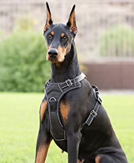 Best pointer dog harness Reviews
