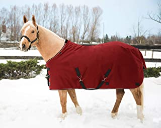 heavy winter horse blanket