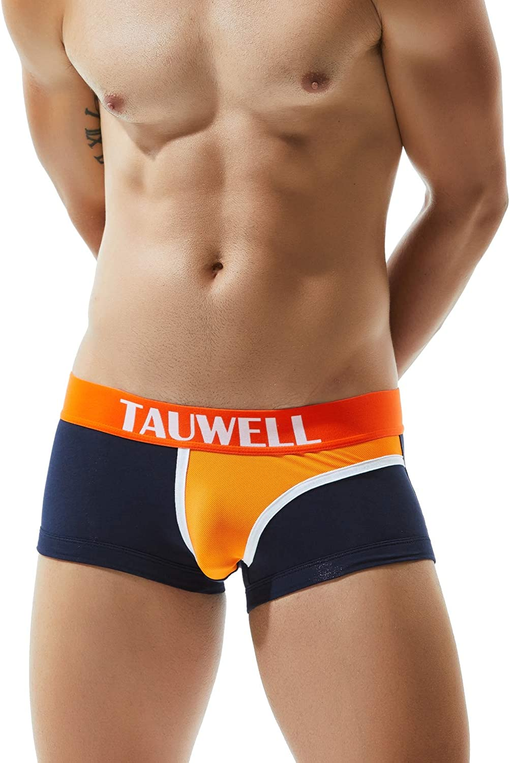 SEOBEAN Large discharge sale TAUWELL Mens Low Rise Sexy Brief Pants low-pricing Short Trunk Boxer