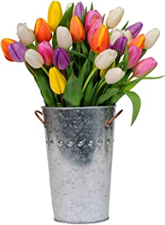 Stargazer Barn - Firework Bouquet - 30 Assorted Color Tulips with French Bucket Style Vase - Farm Fresh