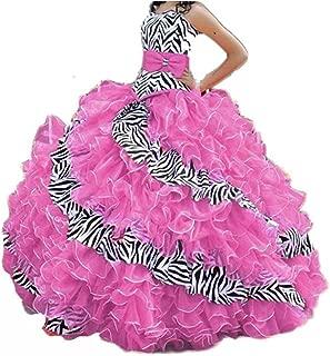 pink zebra print quinceanera dresses