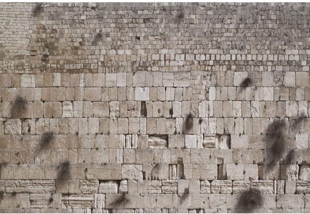 SZZWY 8x6.5ft Western Wall Backdrop Jerusalem Judaism Wailing Wall Ruins Background for Photography Judaism Event Decor Banner Room Decor Wallpaper Audlts Photo Booth