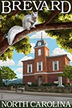 Brevard, North Carolina - Courthouse and White Squirrel (24x36 Fine Art Giclee Gallery Print, Home Wall Decor Artwork Poster)