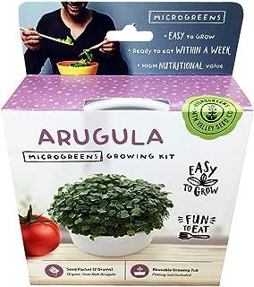 Mini Microgreens Growing Kit - Arugula - Grow Your Own Organic Gourmet Micro Greens Indoors: Salad, Sandwich & Garnish - Easy & Fun - Great Gift or Stocking Stuffer (Arugula)