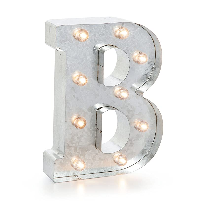 Darice 5915-703 Silver Metal Marquee Letter 9.875