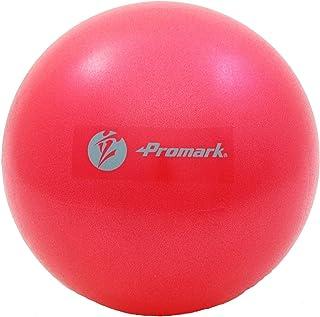 サクライ貿易(SAKURAI) Promark(プロマーク) 野球 ジムボール レベル2 立花龍司監修 直径26cm TPT0282